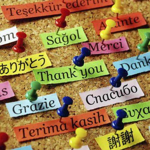 Língua Estrangeira